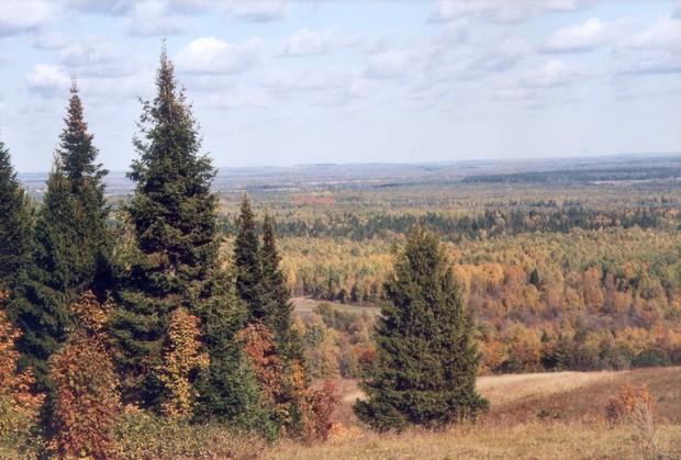 Природа Татарстана