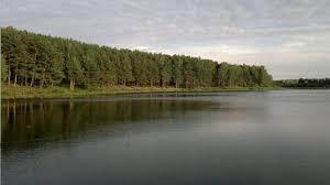 Удивительная природа Татарстана