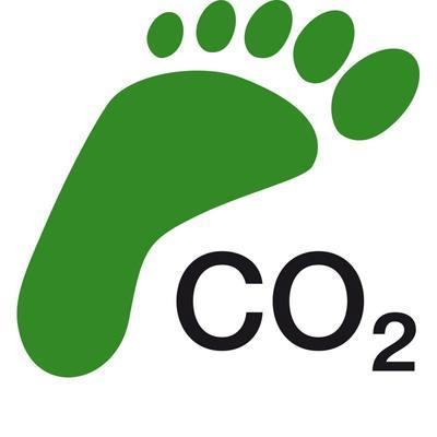 Как сократить углеродный след?